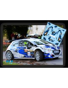 Peugeot 208 R5 F.Dorado & R.Torrente Rallye San Froilan 2019