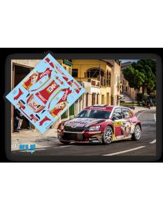 Skoda Fabia R5 N.Al Attiyah & M.Baumel Rallye Cataluña 2015