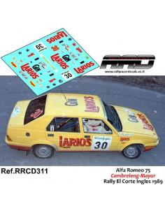 Seat Ibiza KitCar Ortega-Gonzalez Rally de Madrid 1999